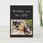 Birthdays are like Cat Animal Humor Card