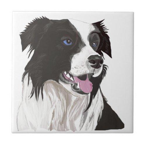 black and white collie blue eyes ceramic tile