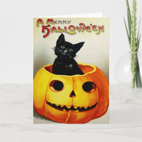 Black Cat In A Jack O' Lantern Card