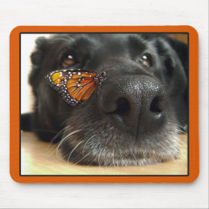 BLack Lab Dog With Butterfly Mouse Pad
