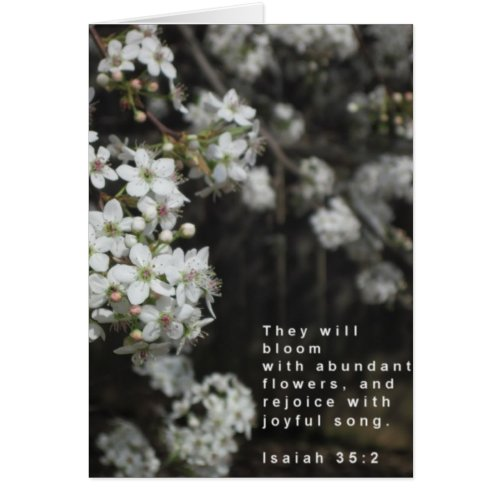 Bloom Scripture Card