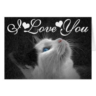 Blue Eyed Cat Photo Image I Love You Greeting Card
