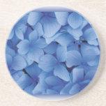 Blue Hydrangea Blossoms coasters