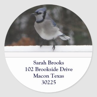 Blue Jay Address Labels Sticker