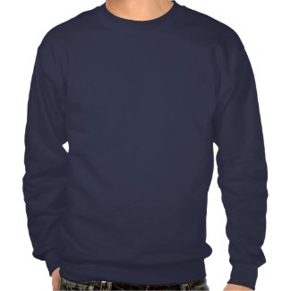 Blue Nerd Cat Pullover Sweatshirts