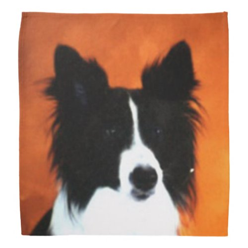 Border Collie Bandana