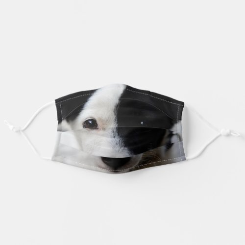Border collie puppy cloth face mask