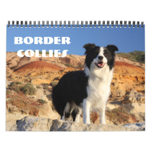Border Collies Calendar
