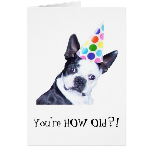 Boston Terrier Birthday Party Card Zazzle