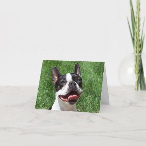 Boston Terrier Puppy Dog Notecard