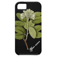 Botanical White Flower iPhone 5 Cover