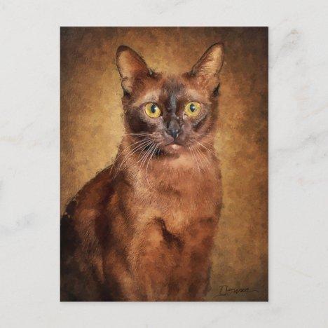 Brown Burmese Cat Holiday Postcard
