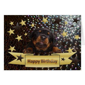 Rottweiler Birthday Cards Invitations Greeting Amp Photo