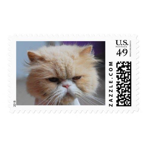 Buff Persian Cat Stamps