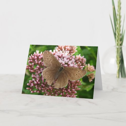 Butterfly and Flower Thinking of You Greeting Card
