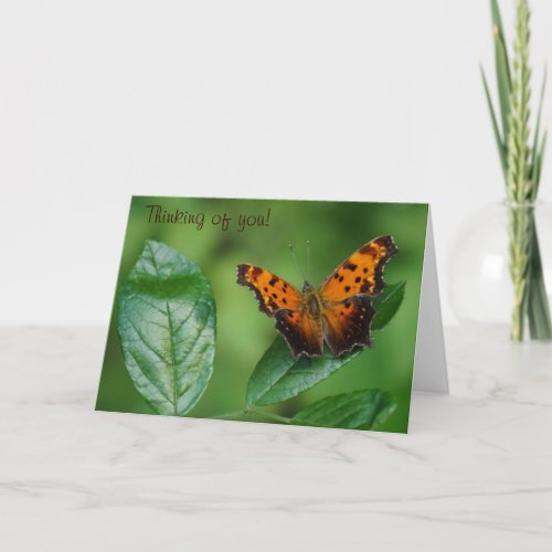 Butterfly Thinking of You! Card