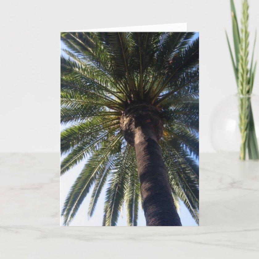 California Beach Palm Custom Photo Greeting Cards