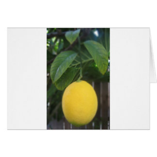 California Lemon Cards