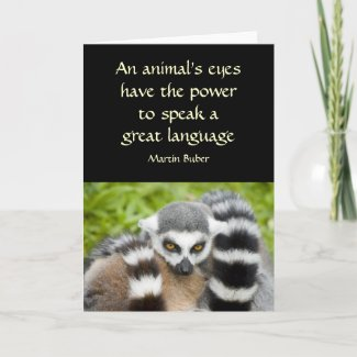 Card with Quote - Cute Lemur Stripey Tail card