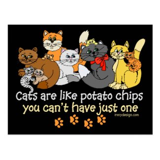 Cats are like potato chips postcard