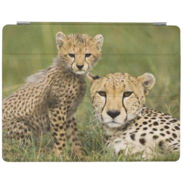 Cheetah, Acinonyx jubatus, with cub in the iPad Smart Cover