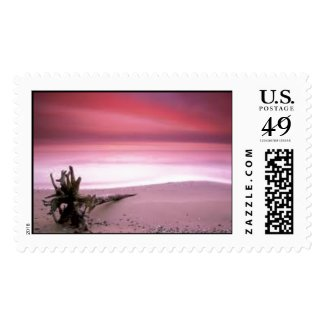 Chesapeake Bay At Sunset Stamp