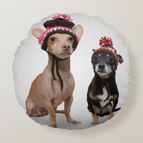 Chihuahua Dogs With Hats Photo Round Pillow