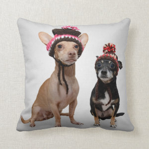 Chihuahua Dogs With Hats Photo Throw Pillow
