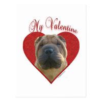 Chinese Shar Pei My Valentine Postcard