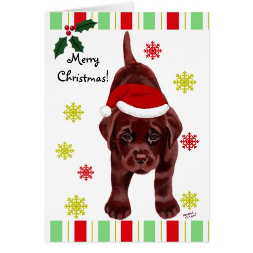 Cute Chocolate Labrador Christmas Cards