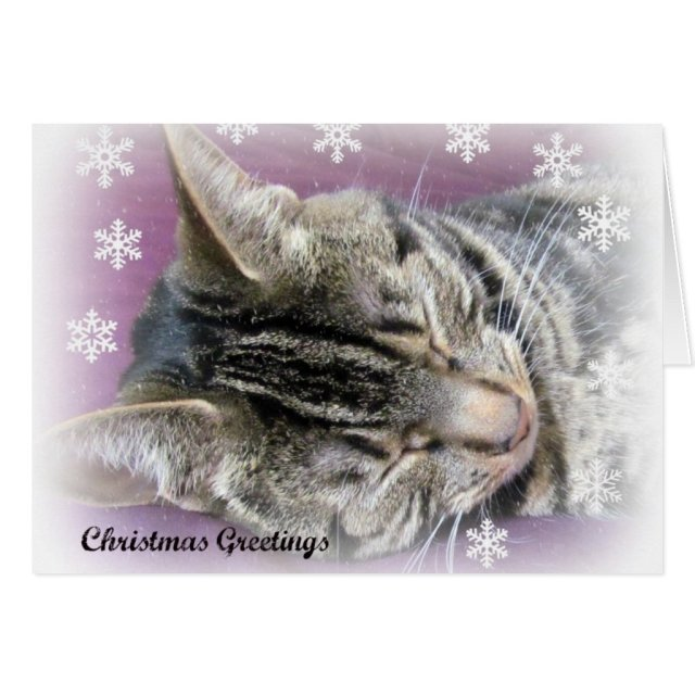 Christmas Dreaming card