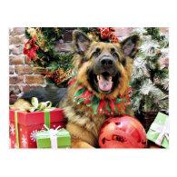 Christmas - German Shepherd - Thor Postcard