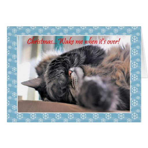 Christmas Wake Me When Its Over Cat Christmas C Card