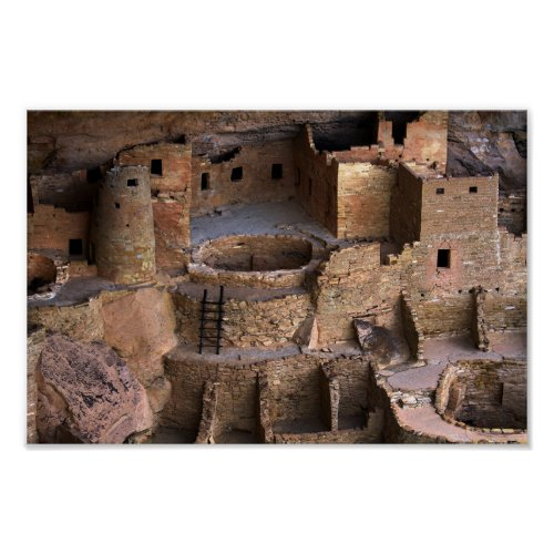 Cliff Palace, Mesa Verde, Colorado Poster