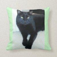 Kitty Pillows - Decorative & Throw Pillows | Zazzle