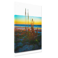 Coastal Plants Sand Dunes Beach And Ocean Canvas Prints