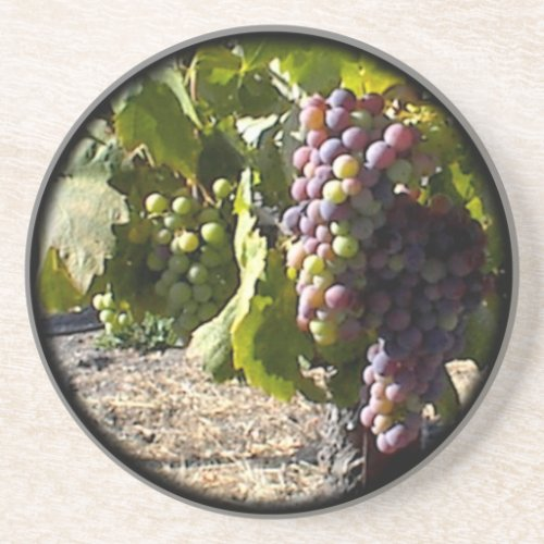 Coaster: Fruit of the Vine Sandstone Coaster