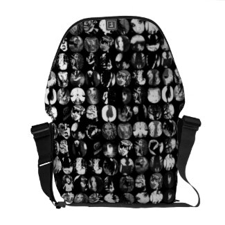 Color Me Perfect Messanger Bag Courier Bags