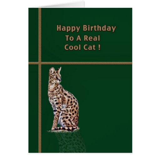Cool Cat Birthday Card With Ocelot Zazzle