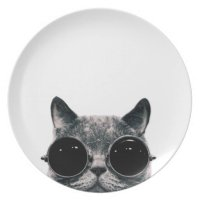 COOL CAT. MELAMINE PLATE | Zazzle