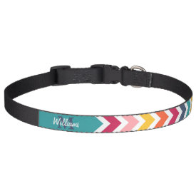 Cool trendy colourful custom Monogram chevron Dog Collar