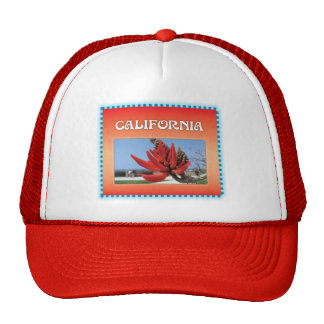 Coral Tree in California Mesh Hats