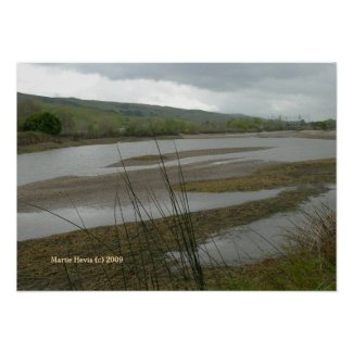 Coyote Creek Print - Select Your Frame print