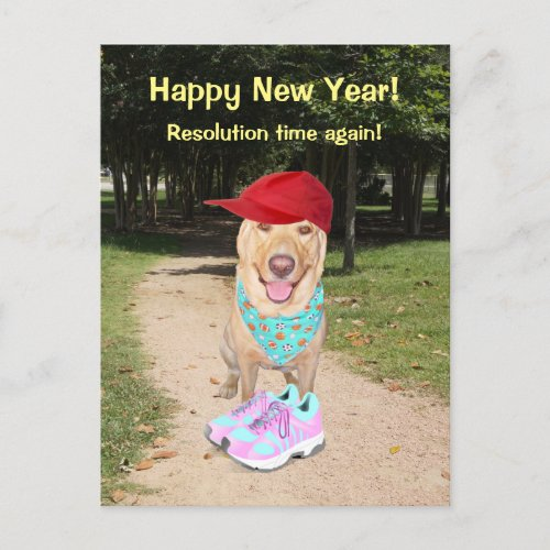 Customizable Funny Dog New Year Resolution Holiday Postcard