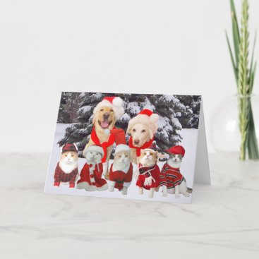 Customizable Funny Pets Christmas Card