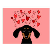 Cute Dachshund with Valentine Hearts Postcard