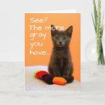Cute Gray Kitten on Orange Background Card