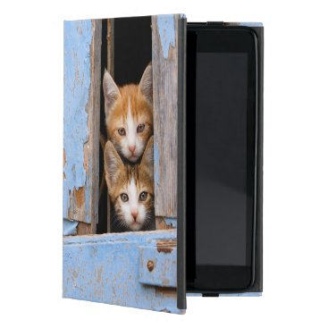 Cute Kittens in a Vintage Window, protection hard Cover For iPad Mini
