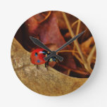 cute little Ladybug costume personalized name gift Round Wall Clocks