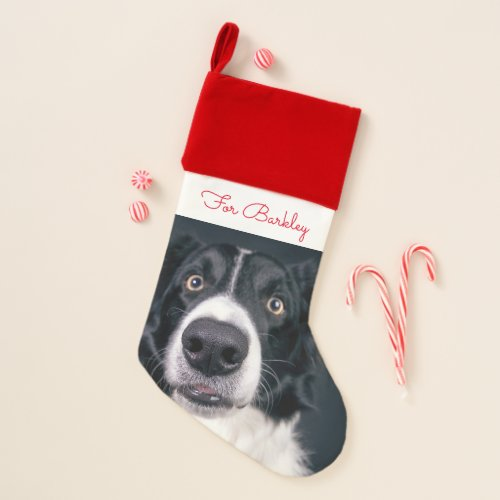 Cute Personalized Dog Pet Photo Christmas Stocking